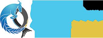 CQ Logo